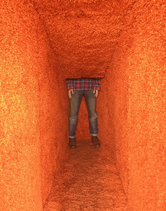 An installation of an orange carpet corridor that collapses as it is traversed, shows the lower half of a man standing immersed in the architecture.
