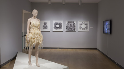 Image of model in exhibition wearing 3D printed dress
