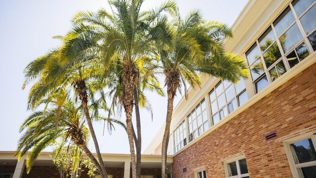 Image of palm trees in front of Perloff Hall, a large red-brick building