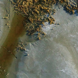 Aerial photograph of dried lake bed. Blue pigmentation appears in most of the image with the top of the photograph capturing vegetative-like growth that appears to be grass and shrubs. A brown vein of pigment cuts diagonally from the bottom left of the image to the edge of the vegetation.